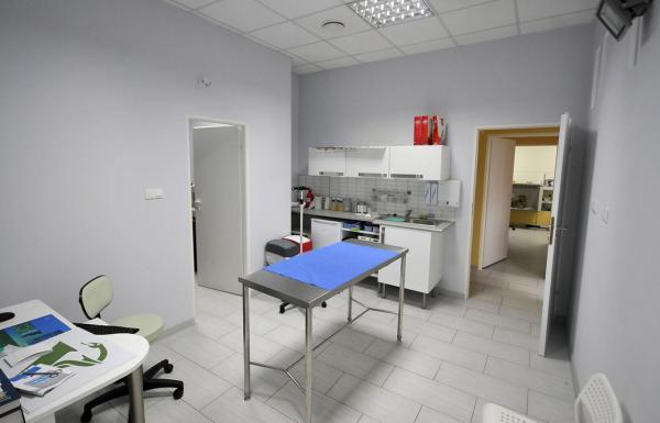 klinika weterynaryjna wnętrza 10